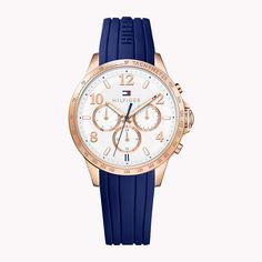 Be on time with your golden blue Tommy Hilfiger Watch