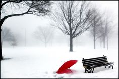 red umbrella and snow | Red umbrella and the empty park | The Red Umbrella | Pinterest