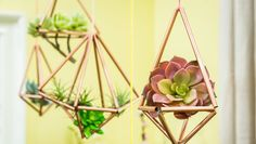 Hang these DIY Copper Luxe Planters along your patio and switch out the plant for summer blooms and succulents! They'll catch light as the sun sets.