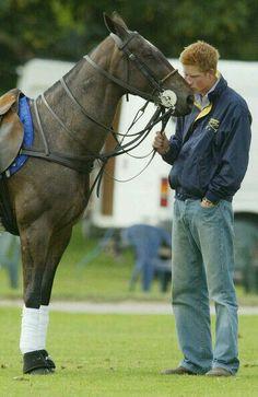 Sweet Prince Harry and a polo pony. If a polo pony kisses a Prince does he turn into a toad?