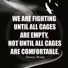 Speak up, speak out...  until all cages are free...  release the animals from human oppression! Only then will humans truly be free!