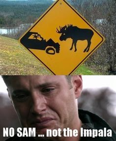 """I didn't laugh, I really really didn't... yeah ok I laughed   (ps if you don't watch the show, then you're not going to get this. I can just see some idiot going """"Impala? that's clearly a moose."""" And if that's the case, epic fail on Sooo many levels.)"""