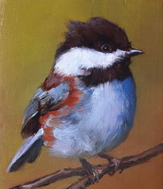 Chestnut-Backed Chickadee by Shauna Finn