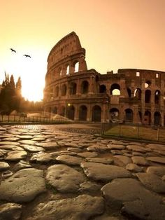 Photographic Print: Colosseum, The Poster by Michele Falzone : 24x18in