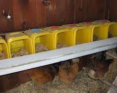 Chicken Nesting Box Ideas Google Search Chicken Coop
