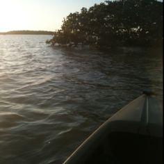 Kayak :)