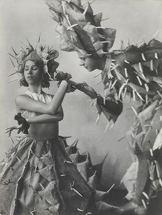 Manon Chaufour and Otto Werberg in Tanzkakteen, 1931