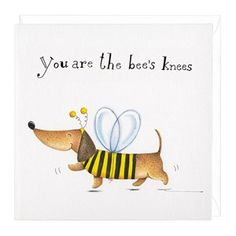 rb86-bees-knees-dog-card-by-rachel-baines-with-envelope.jpg