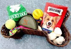 Put together the perfect easter basket for your dog httpwww 200 ideas for candy free easter baskets that kids and adults will love dog gift negle Image collections