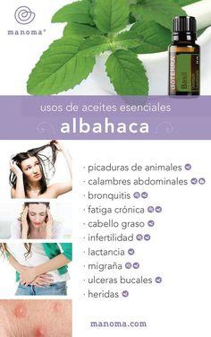 Albahaca