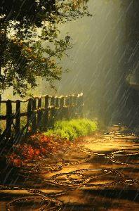 Scenery Of Beauty Wallpaper Rainy Night, Rainy Days, Winter Gif, Beautiful Places, Beautiful Pictures, I Love Rain, Rain Photography, Singing In The Rain, Back Road