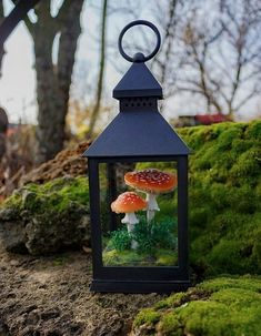 New work ✨ mushroom lantern lamp Mushroom Lights, Mushroom Decor, Mushroom Art, Glowing Mushrooms, Classic Lanterns, Fairy Lanterns, Lantern Lamp, Lantern Crafts, 3d Fantasy