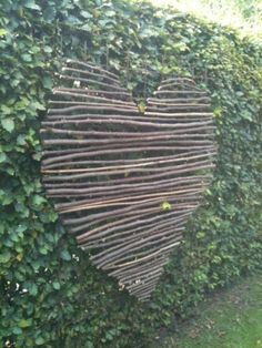 Murs de cloture. Un cœur de bois au milieu de la verdure.