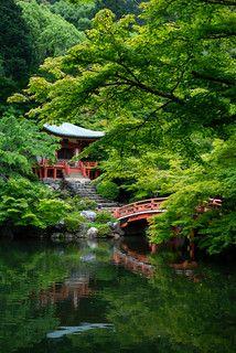 Untitled | 藍迪 蔡 | Flickr Beautiful Landscapes, Beautiful Gardens, Japanese Garden Landscape, Japanese Gardens, Chinese Garden, Japan Garden, Autumn Scenery, Garden Inspiration, Mother Nature