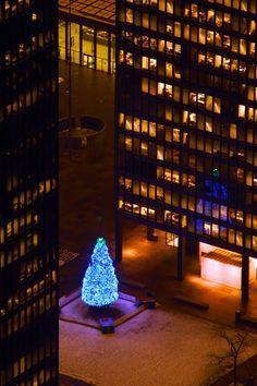 Christmas in Toronto