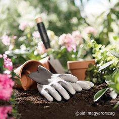 Irány a kert! Gloves, Leather