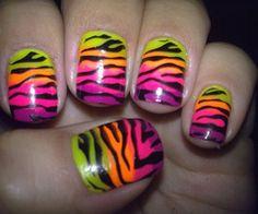 zebra !!