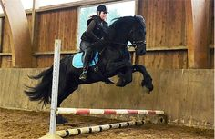 """at first when they cantered into the arena they yelled """"go friesians"""" then when they jumped it sounded more like """"hold on!"""""""