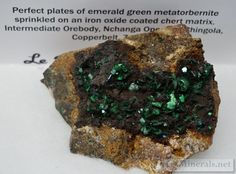 Exceptional Metatorbernite from Nchanga, Chingola Mine, Copperbelt Province, Zambia