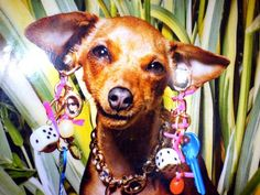 hehe Scooby Doo, Princess Zelda, Fictional Characters, Art, Art Background, Kunst, Performing Arts, Fantasy Characters, Art Education Resources