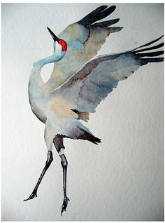 watercolor: sandhill crane