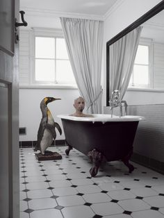 Photographer Liselotte Habets explores our attachments to our pets, even after they are gone - kinda. Clawfoot Bathtub, Thats Not My, Flooring, Pets, Penguin, Photography, Behance, Culture, Inspiration