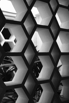 Honeycomb retaining wall.