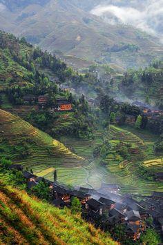 Dragon's Backbone Rice Terraces in Longsheng County, China