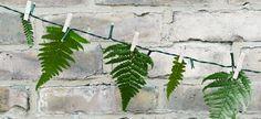 Lichterkette Blätter