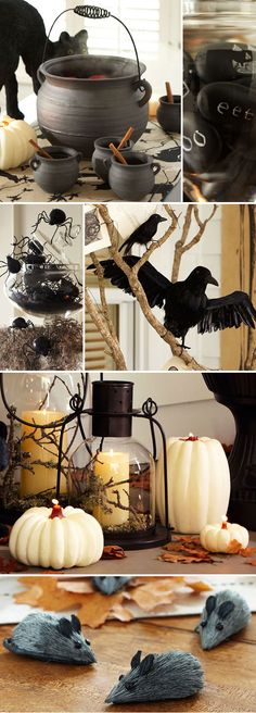 Pottery Barn Halloween - black cats and witches cauldrons, spiders, and crows in flight