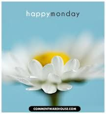 happy monday images - Google Search Happy Tuesday Pictures, Happy Monday Images, Happy Tuesday Quotes, Happy Quotes, Happy Wednesday, Good Morning Tuesday Wishes, Good Morning Gif, Good Morning Flowers, Good Morning Everyone