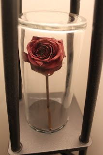 A rose from my wedding preserved in a vase from my wedding, matches the red/black theme of our bedroom. Memory Decor Milk and Honey: Crafting