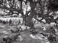 Africa | 'Politics as usual; Members of the Nyangatom council of elders, representing fifteen villages, taking recess in the shade. | Photo of the Omo River Valley tribes from Sebastião Salgado's  book Genesis
