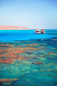 Red Sea - Cairo and Hurghada Egypt Holiday http://www.maydoumtravel.com/egypt-classic-tours-and-travel-packages/4/1/16