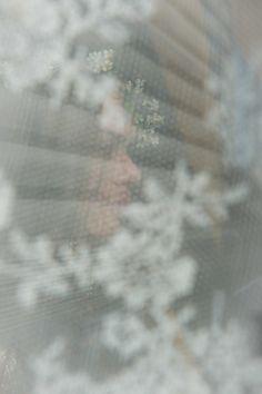 Photo by Torstein Gamst @ www.pixlight.no