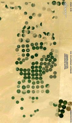 Irrigation circles in the Saudi desert. Image from Google Earth.