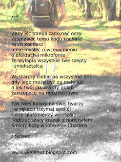 http://wielenut.blogspot.com/2009/02/zeby-isc-trzeba-zamknac-oczy.html