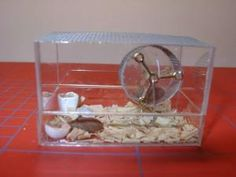 Guinea pig cage, tutorial