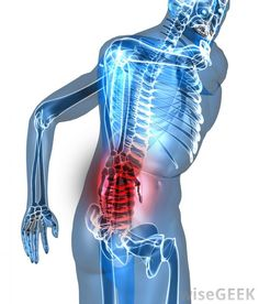 1000 ideas about lower back pain and abdominal pain on
