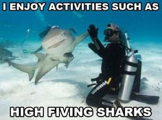 High Five A Shark