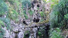 Quinta da Regaleira Tourism, Portugal - Next Trip Tourism Portugal Tourism, Places To Travel, World, Plants, The World, Plant, Planting, Planets, Travel Destinations