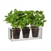 Cever watering system - Boskke Cube 3 Small