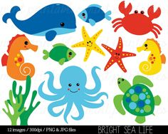 Sea Animal Clipart, Under the Sea, Baby Sea Creatures Clip Art, Animal Clipart Whale Ocean Crab - Commercial & Personal - BUY 2 GET 1 FREE! by mintprintables on Etsy https://www.etsy.com/uk/listing/275202730/sea-animal-clipart-under-the-sea-baby