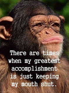 At times I remember to snap it! - Funny Monkeys - Funny Monkeys meme - - At times I remember to snap it! Haha Funny, Funny Cute, Funny Jokes, Hilarious, Funny Stuff, Work Quotes, Wisdom Quotes, True Quotes, Sarcastic Quotes
