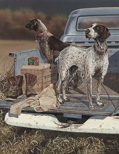 A829379559:Opening Day-German Shorthair; Storm