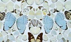 Damien Hirst Butterflies