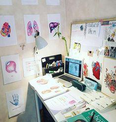 Student Room, Student Studying, Student Desks, Medical Students, Nursing Students, Medical School, Medical Art, Nursing Schools, Medical Drawings