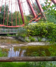 This Amazing Abandoned Amusement Park, Miami