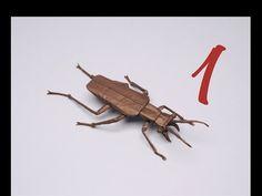 Salt Creek Tiger Beetle by Robert J. Lang