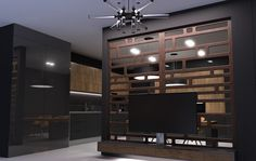 Decorate your home with wall paneling and the panels can act as a TV stand as well Kitchen Cabinet Doors, Kitchen Cabinets, Quality Kitchens, Decorative Panels, Decorating Your Home, Modern Design, This Is Us, Tv, Interior